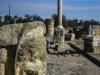 Immaginamurgia - Capitello della dea Giunone (presso Basilica di San Leucio) di Mariangela Intraversato (sezione presente, categoria storia)