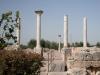 Basilica di San Leucio (III sec a.C.-VIII sec)