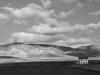 tn_52-calderoni-cat-presente-natura-gravina-in-puglia-2014