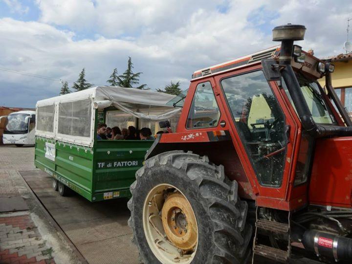 Study visit in Romagna / tema: l'azienda agricola multifuzionale