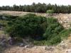 Grotta del Cavone - Spinazzola