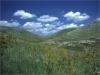 Lama nei pressi della Rocca del Garagnone - Spinazzola